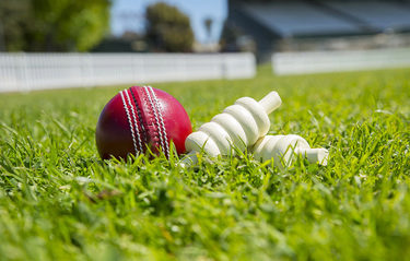 Deakin international students bowled over by Cricket Victoria clinics